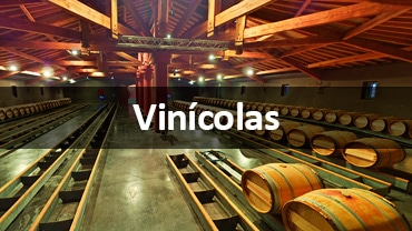 Street View Trusted para Vinicolas