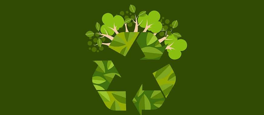 Por Que Divulgar Produtos Sustentáveis/Ecológicos no Google Ads