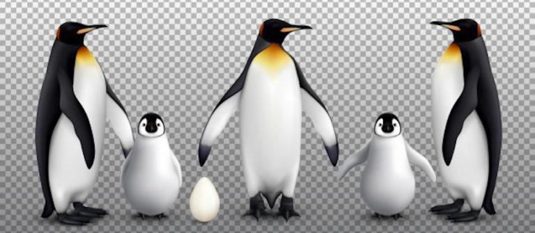 Google Apresenta Animais em 3D nos Resultados das Buscas